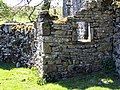 Part of the ruined house at Thorns and a baby owl - geograph.org.uk - 707783.jpg