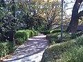 Path - panoramio (3).jpg