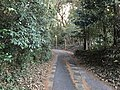 Path near Shin-Toyotsu Station.jpg