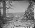 Peach Tree Creek Battlefield. (five miles from Atlanta, Ga.) 1864 - NARA - 524938.tif