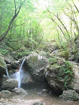 Borovniščica - Borovniščica Creek in Hell Gorge