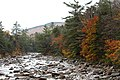 Pemigewasset River, Lincoln Woods Trail, Lincoln (493958) (11747977894).jpg
