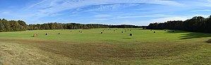 Pharr Mounds - Image: Pharr Mounds 1