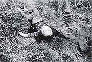 Phong Nhi massacre 2