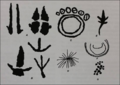 Picture1 showing motifs typical of the Panaramitee Style.png
