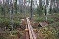 Pitkospuut Sammalsuolla, Liesjärven kansallispuisto, Tammela, 15.11.2014 (2).JPG