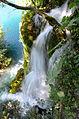 Plitvicka, Croatie (2).jpg