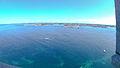 Plouguerneau vue du phare de l'Île Vierge - Plouguerneau - Finistère (9593538375).jpg