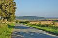 Pohled na Velký Kosíř ze silnice od Přemyslovic do Pěnčína, okres Prostějov.jpg