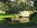 Pond near Halton Church - geograph.org.uk - 1040188.jpg