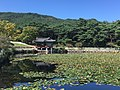 Pond of Tongiljeon 1.jpg