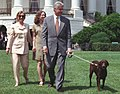 President Bill Clinton, First Lady Hillary Clinton, Chelsea Clinton, and the dog Buddy walking on the South Lawn 24 July 1998.jpg