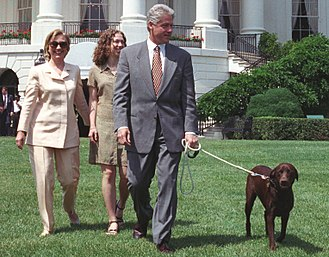 Clinton family - Buddy being walked by the Clintons on the White House lawn in 1998.