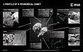Profile of a primordial comet ESA16082212.jpeg