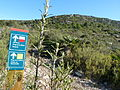 Puig de la Mola (Parc del Garraf).jpg