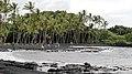 Punalu'u Beach, Pahala (504428) (23793217716).jpg
