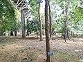 Putrajaya, the Botanical Garden 29.jpg