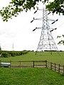 Pylon and paddock, Doe Bank Lane - geograph.org.uk - 1853582.jpg