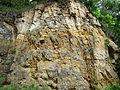 Quartzose sandstones (Jordan Sandstone, Upper Cambrian; roadcut on the northern side of Stillwater, Minnesota, USA) 10 (18969910112).jpg