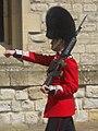 Queen's Guard Marching (5986810133).jpg