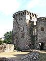Raglan Castle, Monmouthshire 30.jpg