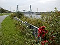 Railings on the Banks of the Tees - geograph.org.uk - 586095.jpg