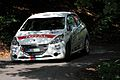 Rally Bohemia 2013 - Černý, Peugeot 208 VTi R2.jpg