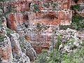 Redwall Limestone - Flickr - brewbooks (7).jpg