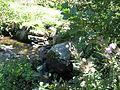 Reka Treska,selo Rusjaci .jpg