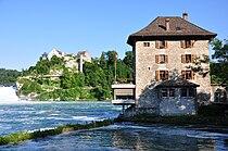 Rheinfall - Schloss Wörth IMG 3774.jpg