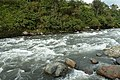 Rio Cosanga 2015-06-11 (13) (38580595520).jpg