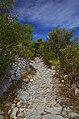 Ripido sentiero - panoramio.jpg