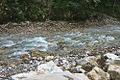 River Mali Rzav and Visocka Banja Spa in Serbia - 4283.NEF 26.jpg