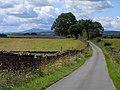 Road above Park Head near Kirkoswald - geograph.org.uk - 1567614.jpg