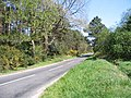 Road on Affpuddle Heath - geograph.org.uk - 406604.jpg