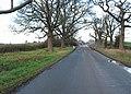 Roadworks near Green Crize - geograph.org.uk - 627946.jpg