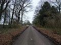 Robin Hood Way leaving Tile Kiln Wood - geograph.org.uk - 1168699.jpg