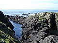 Rocky coastline near the South Light - geograph.org.uk - 893167.jpg