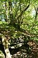 Rocky hillside - geograph.org.uk - 1334367.jpg