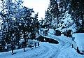 Rokeby Snow (14831263785).jpg