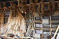Ropemaking display at Roskilde Viking Ship Museum (1) (35591488133).jpg