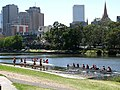 Rowing on the Yarra River.jpg