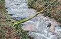 Ruisseau de Malrieu (1).jpg