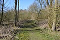 Rushy Mead nature reserve 4.JPG