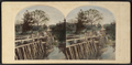 Rustic Bridge, Sleepy Hollow. Scene of Washington Irving's 'Headless Man.', from Robert N. Dennis collection of stereoscopic views.png