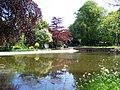 Rylstone Pond - geograph.org.uk - 433161.jpg
