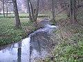 Rzeka Prądnik w Ojcowskim Parku Narodowym - panoramio.jpg