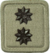 SANDF Rank Insignia Lieutenant embossed badge.png