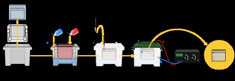 SDS Gel Electrophoresis and Western Blot Protocol
