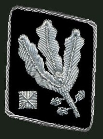 Register of SS-Leaders in general's rank - Gorget patch (until April 1942 Allgemeine SS and Waffen-SS)